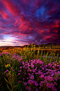 Phil Koch - Life Love and Hope