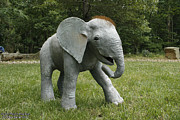 Wildlife Sculpture Acrylic Prints - Life-sized gourd Elephant Acrylic Print by Cara Bevan