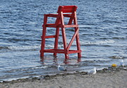 Warwick Framed Prints - Lifeguard Chair Goes For A Swim Framed Print by Kate Gallagher