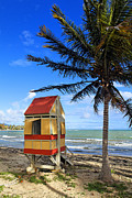 Puerto Rico Photo Prints - Lifeguard Hut on a Beach Print by George Oze