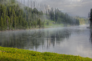 Travel Photographs Photos - Lifting Fog on the Yellowstone River by Sandra Bronstein