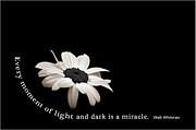 Prose Posters - Light and Dark Inspirational Poster by Bill Pevlor