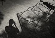 B Photo Prints - Light And Shadow Print by Setsiri Silapasuwanchai