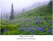 Randall Branham - Light Blooming Rain