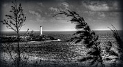 Finr Art Prints - Light House 2 Print by Craig Incardone