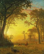 Bull Elk Digital Art Posters - Light In The Forest Poster by Albert Bierstadt
