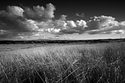 Big Sky Framed Prints - Light on the Grasslands Framed Print by Peter Tellone