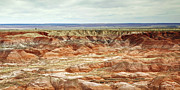 Travel Photographs Framed Prints - Light On The Painted Desert Framed Print by Phill  Doherty