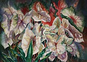 Roxanne Tobaison - Light Play Caladiums