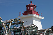 Ron Pettitt - Lighthouse And Lobster...