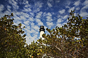 Print Pyrography Posters - Lighthouse at Bill Baggs Florida State Park Poster by Eyzen Medina