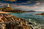 Lighthouse Bay Print by Adrian Evans