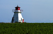 Light House Prints - Lighthouse Prince Edward Island Print by Edward Fielding