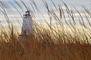 Xcape Photography - Lighthouse through the...