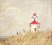 Pam  Holdsworth - Lighthouse With Red Roof