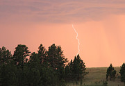 Bill Gabbert - Lighting strikes in Wind...