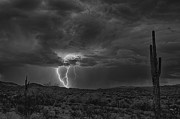 Saija  Lehtonen - Lightning in Black and White