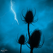 Lightning Strike Digital Art Framed Prints - Lightning Spikes Framed Print by Michael Rucker