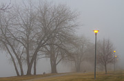 Photography Prints Prints - Lights and Fog Setting the Mood Print by James Bo Insogna