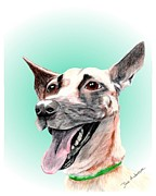 Animal Shelter Mixed Media - Lila - a former animal shelter sweetie by Dave Anderson