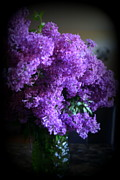 Kkphoto1 Prints - Lilac Bouquet Print by Kay Novy