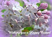 Heidi Manly - Lilac Easter card