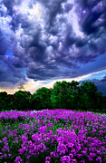 Lilacs Photos - Lilacs by Phil Koch