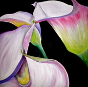 Lush Green Painting Posters - Lilies Poster by Debi Pople