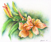 Green Color Art - Lilies by Natasha Denger