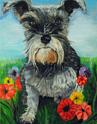 Miniature Schnauzer Paintings - Lillie in a Garden by Melanie Wadman
