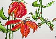 Becca Weeks Art - Lillies in Orange by Becca Weeks