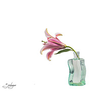 Jan Hagan - Lilly in Aqua bottle