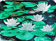 Lilly Pond Paintings - Lilly Pad Flowers by Jean Kieffer
