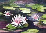Lilly Pond Paintings - Lilly pads by Laurine Baumgart