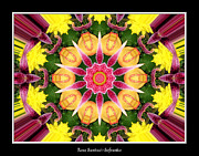 Flower Kaleidoscopes Framed Prints - Lily and Chrysanthemums flower Kaleidoscope Framed Print by Rose Santuci-Sofranko