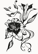 Jenny Rainbow - Lily Elegance