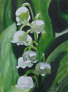 Kim Selig - Lily of the Valley