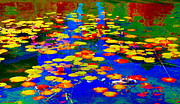 Hommage Prints - Lily Pads And Koi  Pond Waterlilies Summer Gardens Beautiful Blue Waters Quebec Art Carole Spandau  Print by Carole Spandau