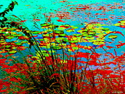 Lake Relections Prints - Lily Pads And Reeds Colorful Water Gardens Grasslands Along The Lachine Canal Quebec Carole Spandau Print by Carole Spandau