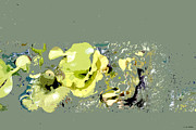 Meditative Digital Art - Lily Pads - Deconstructed by Lauren Radke