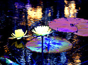 African-american Digital Art Prints - Lily Pond Fantasy Print by Anita Lewis