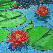 White Waterlily Paintings - Lily Pond Impression by Ana Maria Edulescu