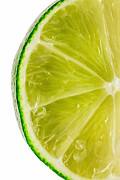 Citrus Fruits Posters - Lime Poster by Bill  Wakeley