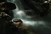Dwayne  Oakes - Limestone Creek