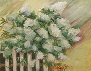Limelight Painting Framed Prints - Limlight Hydrangea Framed Print by Marge Casey