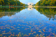 Fall Landscape Print Framed Prints - Lincoln Memorial and Reflecting Pool I Framed Print by Steven Ainsworth