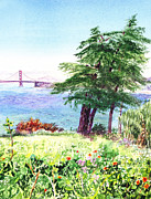 San Francisco Bay Painting Framed Prints - Lincoln Park in San Francisco Framed Print by Irina Sztukowski