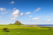 Holy Island Prints - Lindisfarne Castle Northumberland England Print by Colin and Linda McKie