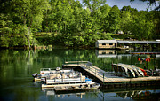 Heber Springs Prints - Lindseys Dock Print by Tammy Link