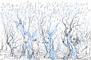 Surreal Landscape Drawings Originals - Line Forest by Regina Valluzzi
